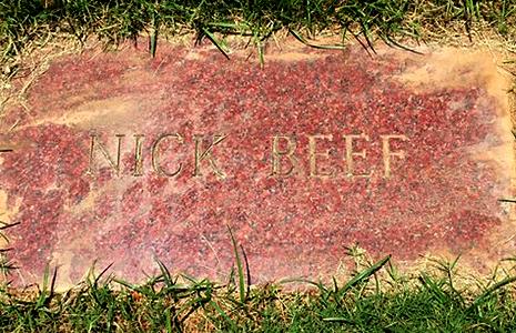 Nick Beef