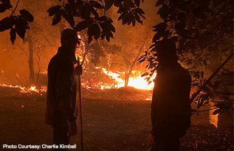 2017 California Wildfires
